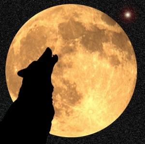 FULL WOLF MOON 5